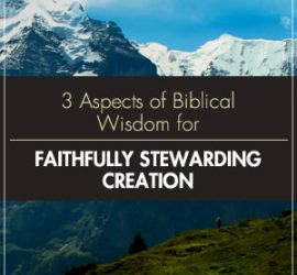 Creation Care - A Biblical Theology of the Natural World
