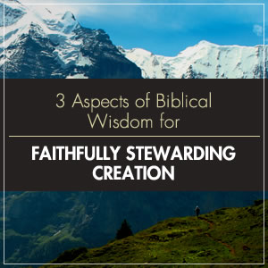 How Can We Steward Creation Faithfully? Here are 3 Aspects of Biblical Wisdom