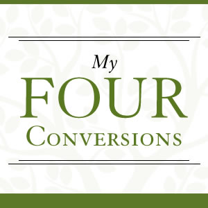 Emotionally Healthy Church – My Four Conversions