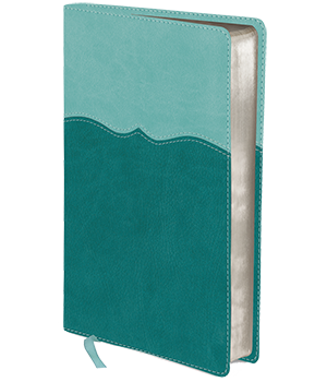 NIV, Mom's Devotional Bible, Compact