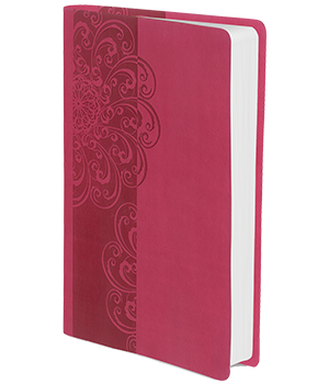 NKJV, ReadEasy Bible, Compact
