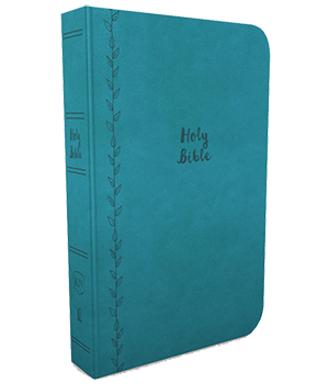 KJV, Value Thinline Bible, Compact, Comfort Print