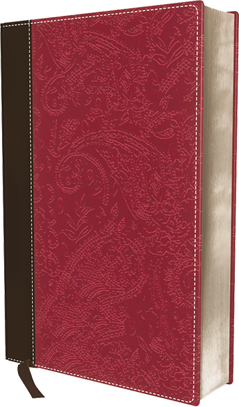 NIV, Bible for Women, Leathersoft, Brown/Pink: Fresh Insights for Thriving in Today's World