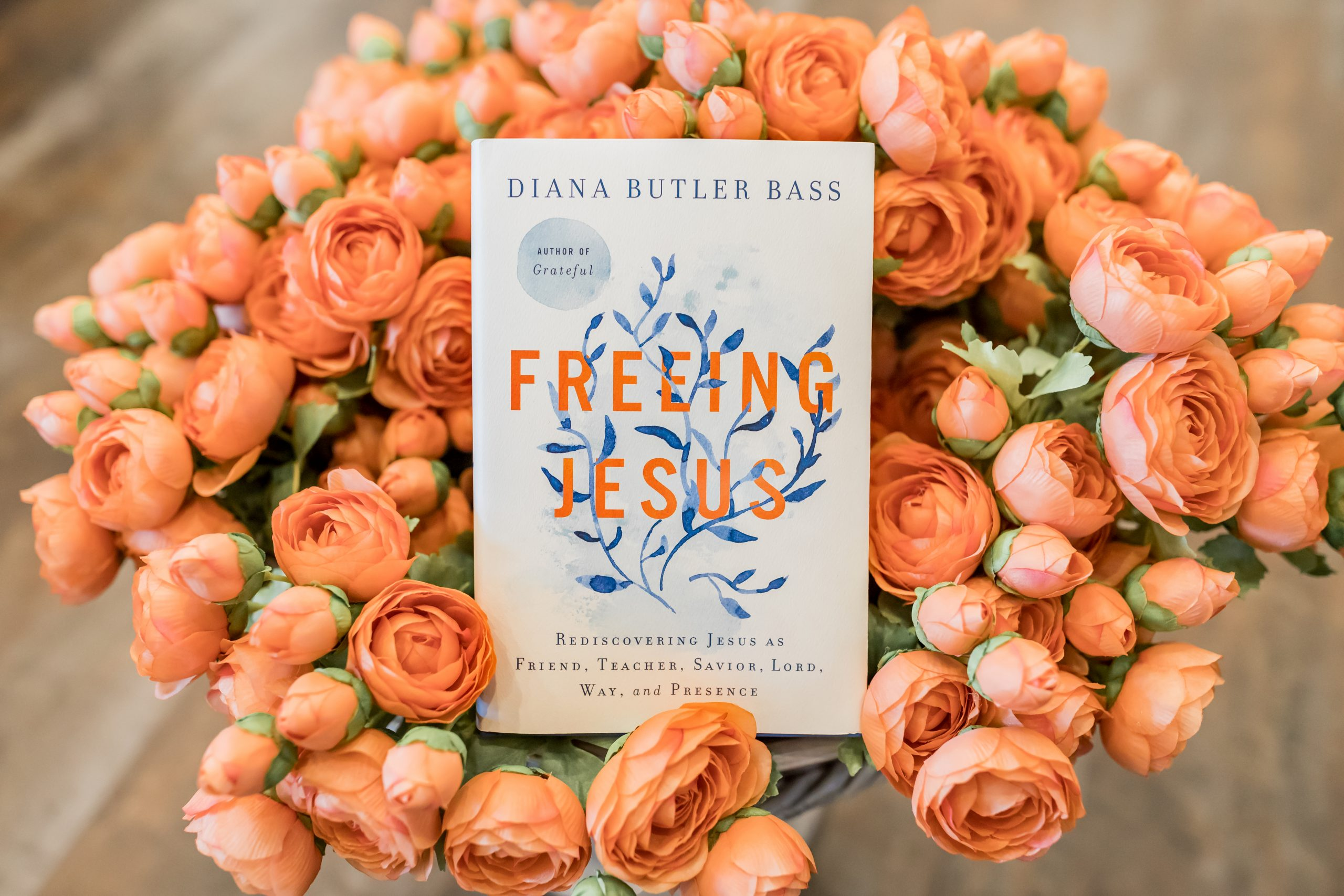 """The Jesus Question: """"Who Are You?"""" 