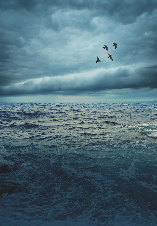 Understanding Heaven While Living on Earth   Levi Lusko